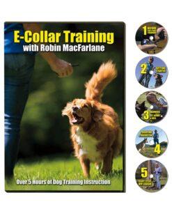 e-collar training with Robin MacFarlane 5 disc set